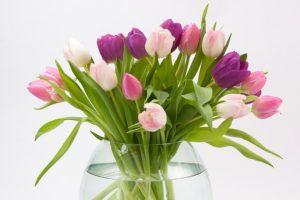 花のように誇らしいワタシ